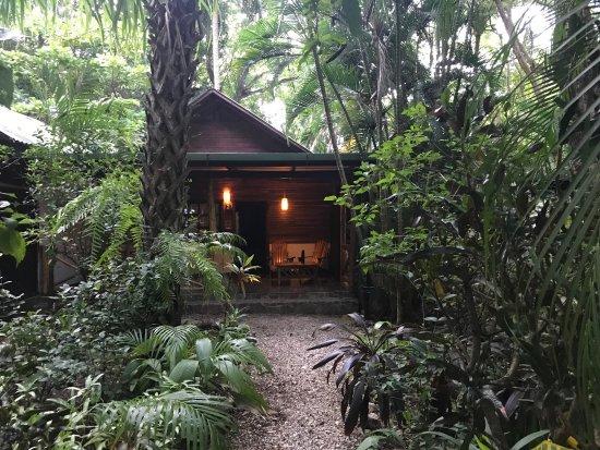 Hotel Tropico Latino : photo0.jpg