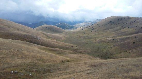 Assergi, Italia: Les arbres sont vraiment rares !