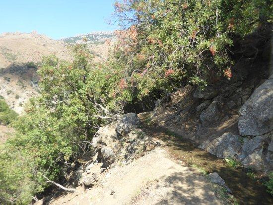 Xiropotamos Natural Pools: at the start of the hike