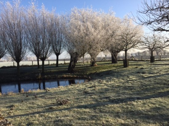 Alveringem, Belgio: Ook in de winter is de Westhoek heel mooi.