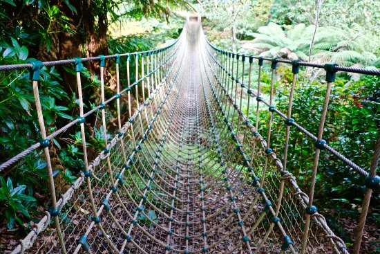 St Austell, UK: Rope Bridge in Forest