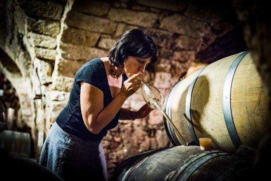 Tarcal, Węgry: Cellar