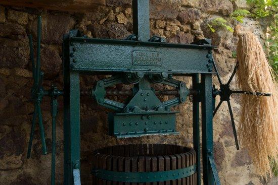 Tarcal, Ungarn: Cellar 4