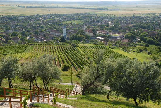 Tarcal, Ungarn: Landscape