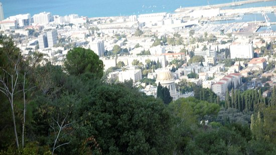 Bay Club Haifa Hotel - an Atlas Boutique Hotel: View from the park next door.