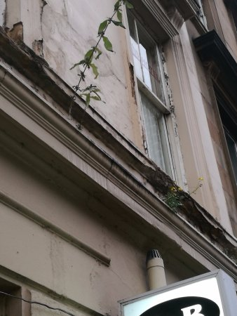 Smiths Hotel: The outside grows on me