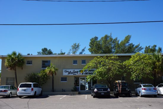 The Molloy Gulf Front Motel And Cottages Updated 2018
