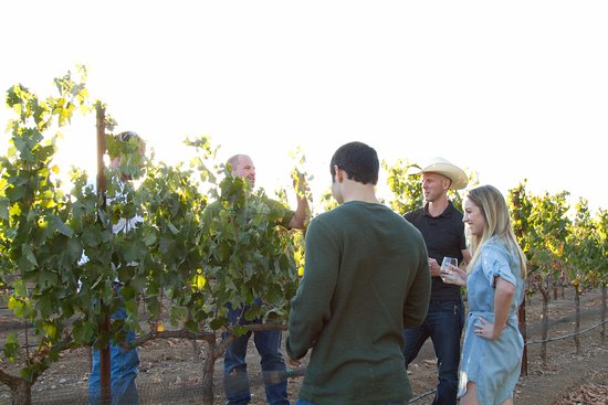 Templeton, CA: Education in the Vines