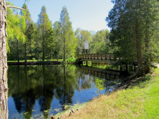 Moccasin Lake Nature Park Clearwater Fl