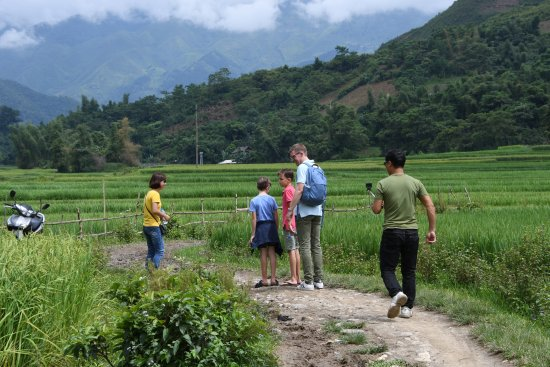 Yen Bai, Vietnam: catching dragonflys with the husband in the ricefields
