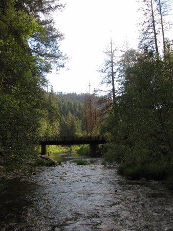 Yosemite Lakes RV Resort: down river from behind the yurt