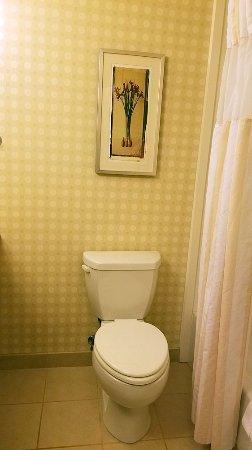 Hilton Garden Inn Harrisburg East: Room 506