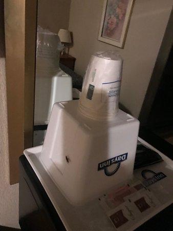 Days Inn Auburn: roach on the ice bucket...disguisting
