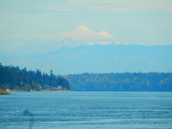 Oak Harbor, WA: Mt Baker from a trail