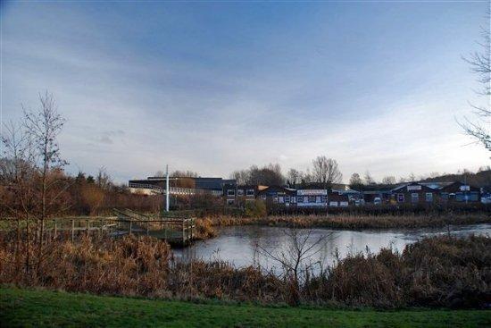 Dunston (Ace) Acer Pond