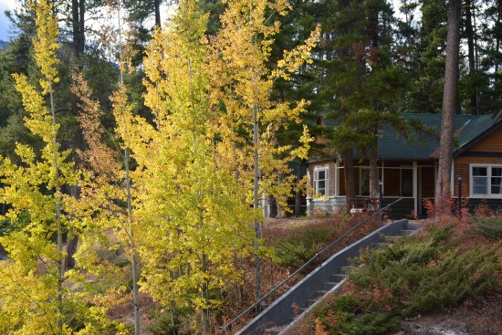 Johnston canyon resort updated 2018 hotel reviews price for Johnston canyon cabins