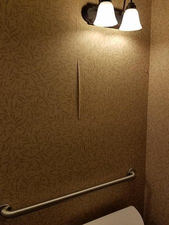 Red Lion Hotel Boise Downtowner: wallpaper tear in bathroom