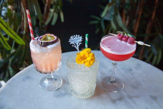 Woollahra, Australië: Cocktails
