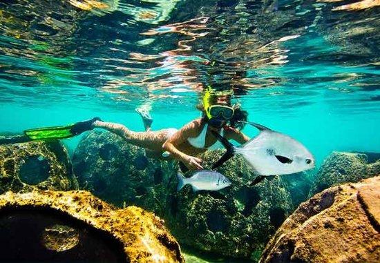 Tortuga Beach Club Resort Map