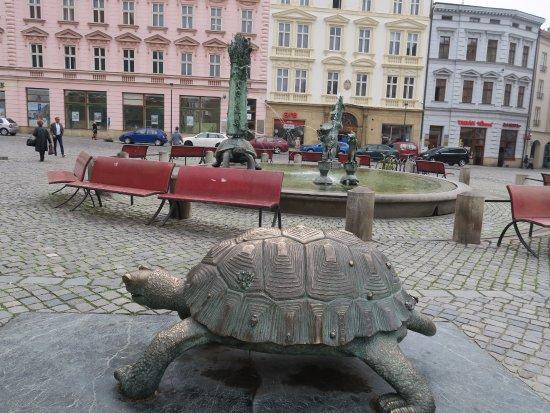 Arion Fountain: 烏龜雕塑
