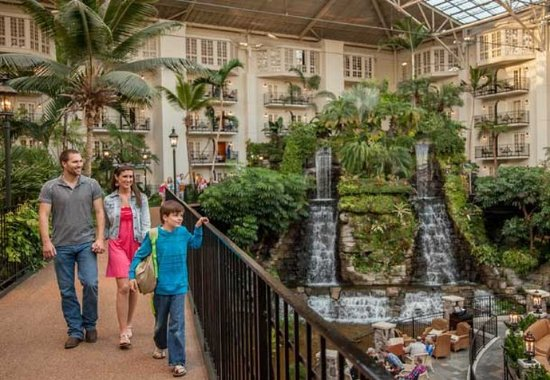 Gaylord opryland resort convention center 3 2 8 229 updated 2017 prices reviews for Gaylord opryland hotel swimming pool