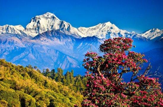 Poonhill Trek com Kathmandu e Pokhara...