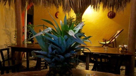 Hostel La Siesta : photo0.jpg