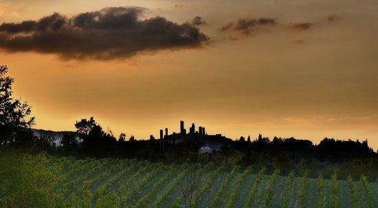 Il Borghetto di San Gimignano Agriturismo : photo4.jpg