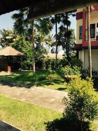 Suly Vegetarian Resort & Spa : photo4.jpg