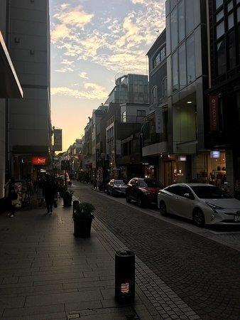 Yokohama Motomachi Shopping Street : photo0.jpg