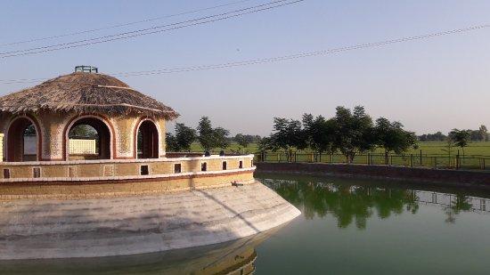 Mansa, Indien: New Gaushala Khokhar kalan