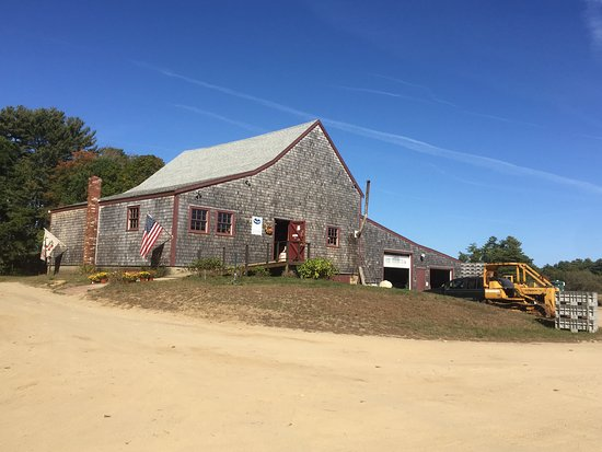 Carver, MA: Farm shop