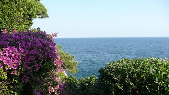 Jardí Botànic Marimurtra: bougainvilliers et vue sur la méditerranée