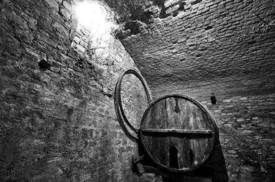 Museo dell'Antica Grancia e dell'Olio : Sotterranei