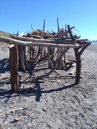 Kapiti Coast, Neuseeland: fun times on paraparaumu beach,making driftwood structures