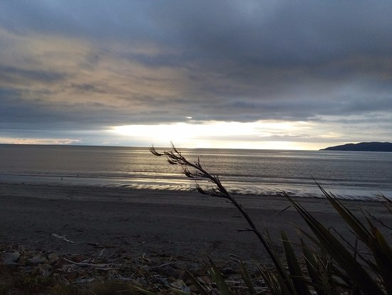 Kapiti Coast, Neuseeland: sunset,southern end of kapiti island with flax,native New Zealand plant