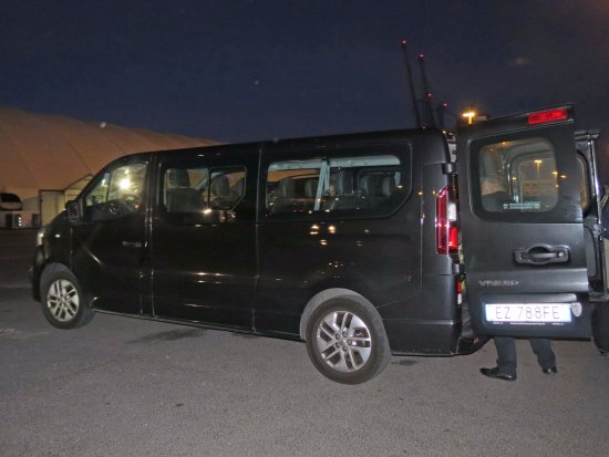 Rome-Airport net Tours: Minivan at Rome Cruise Port (just outside ship)