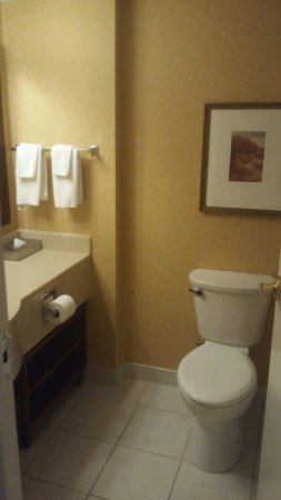 DoubleTree Fallsview Resort & Spa by Hilton - Niagara Falls: Bthroom in 1004