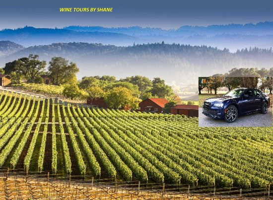 The Top Things To Do Near Bistro Don Giovanni Napa TripAdvisor - 11 amazing attractions and activities in napa valley