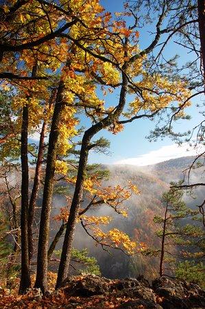Krasnodar Krai, Rosja: В осеннем лесу над ущельем