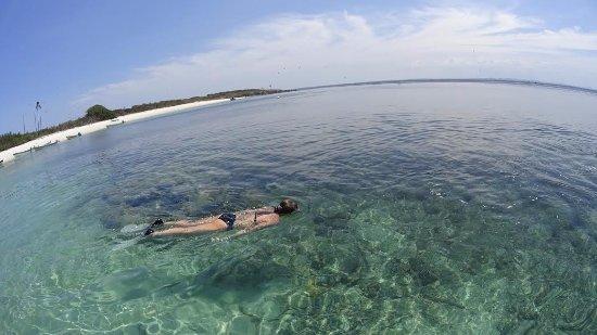 Los Santos Province, ปานามา: isla iguana