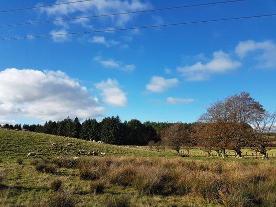 Lockerbie, UK: Eskrigg Nature Reserve
