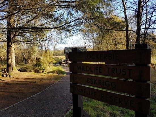 Eskrigg Nature Reserve: 20171102_110840_large.jpg