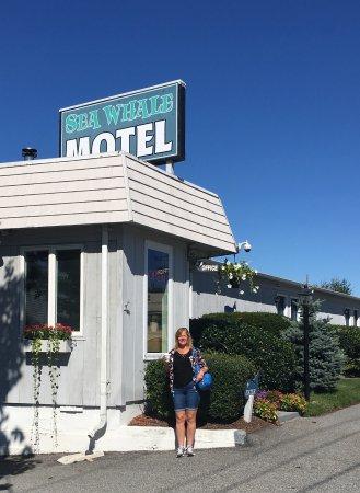 Sea Whale Motel Photo