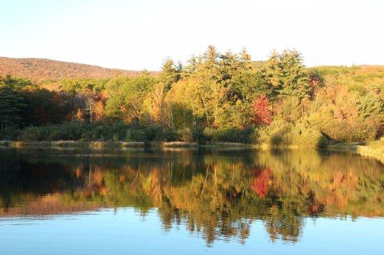 Moultonborough, NH: pond