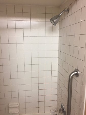 Valparaiso, IN: Mold in shower on arrival
