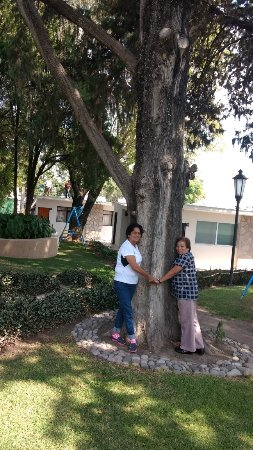 Hotel Rio Tequisquiapan: IMG_20171030_115835162_large.jpg