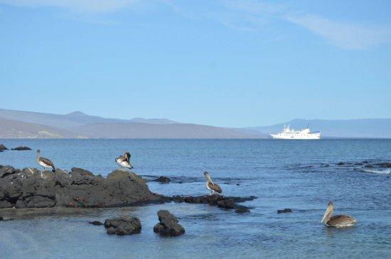 Metropolitan Touring: Yacht La Pinta in the Galapagos Islands