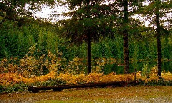 Lake Bronson Club Family Nudist Park (Sultan): UPDATED