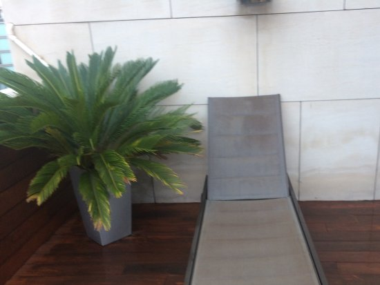 Silken Amara Plaza Hotel : Terraza
